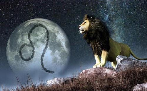Cung sư tử nam có tính cách như thế nào
