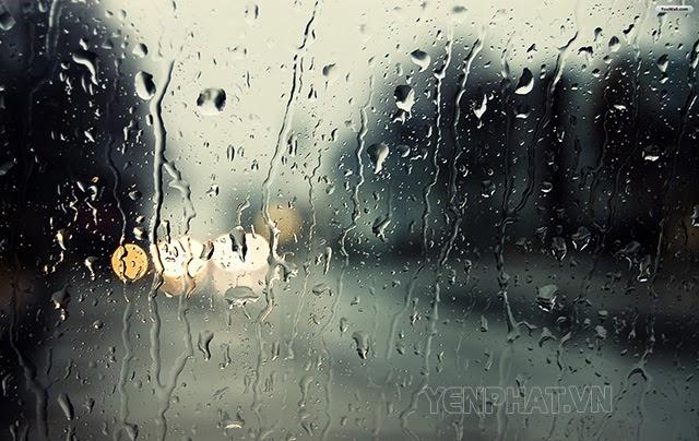 Làm cách nào để ngăn hơi ẩm cho căn nhà của mình?