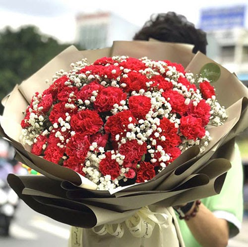 Ý nghĩa hoa cẩm chướng trong ngày 20/11